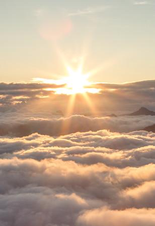 Sunrise of a life lime.