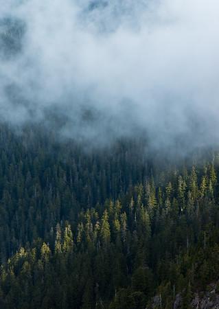 Ray of light. Mount Seymour BC.