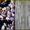 A mixture of black and white smooth pebbles conceal the pump within the 90 litre sump below.