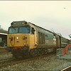 Class 50, 50027 'Lion', waits to depart Andover with 1O18; 1525 Exeter St. David's-London Waterloo - 23 March 1986.