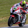 Brands BSB Round 1 Sunday-2513