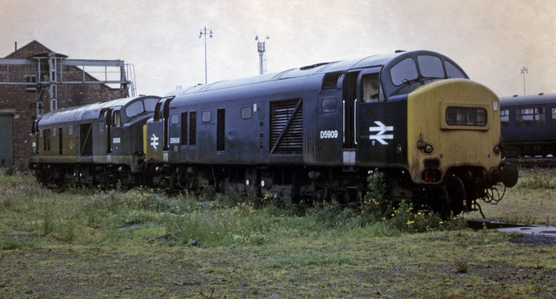 Baby Deltics on the scrap line, Stratford depot, 18 June 1972,  Green D5095 & blue D5909 were scrapped the following year.  Photo by Les Tindall.