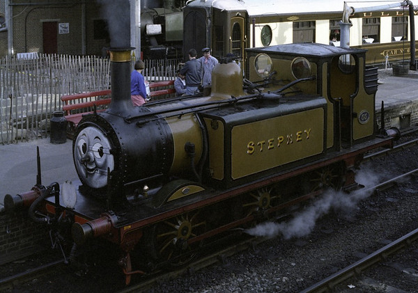 LBSCR 55 Stepney (32655), Sheffield Park,1989
