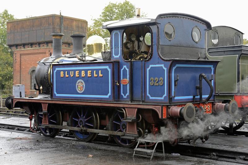 [SECR] 323 (31323) Bluebell, Sheffield Park, Mon 13 October 2014