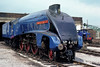 4498 Sir Nigel Gresley, Carnforth Steamtown, 11 June 1977.   In November 2015 60007 arrived at the National Railway Museum for overhaul after working on the North Yorkshire Moors Railway for a number of years. Photo by Les Tindall.
