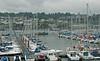 Kingswear marina, 17 May 2008