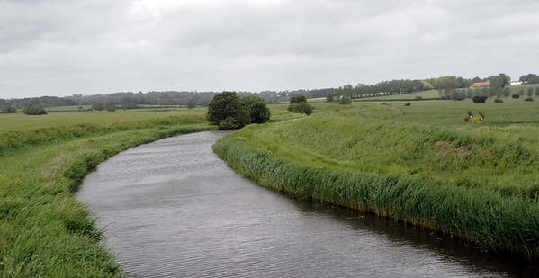 River Rother, near Northiam, Fri 8 June 2012: Looking north.  The river marks the border between East Sussex (left) and Kent.