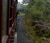 Furness Rly No 20, climbing towards Newby Bridge, Tues 23 August 2005.
