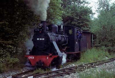 Knebworth Park & Wintergreen Railway, 1975 - 1976