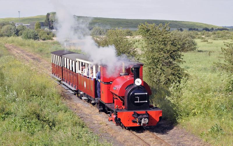 Leader, near Kemsley Down, Sat 9 June 2012 3 - 1732.