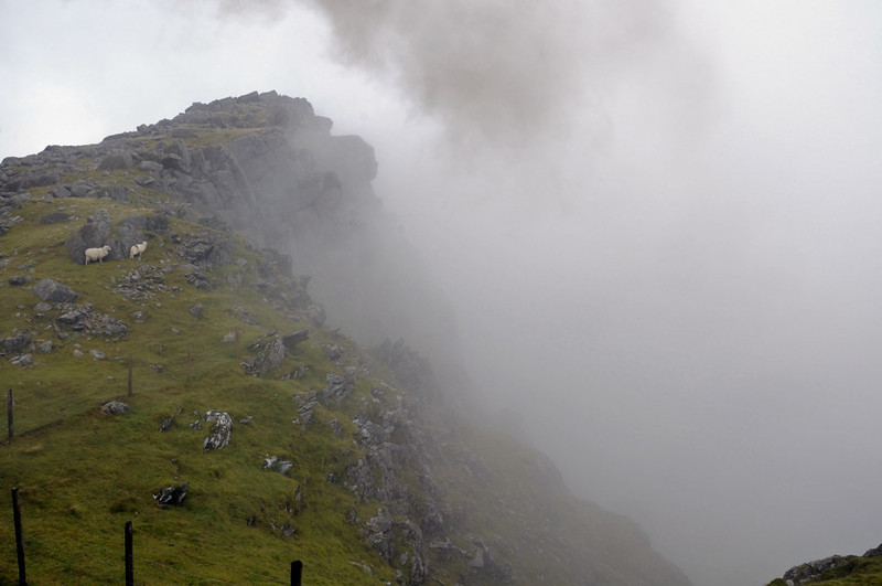 Smoke and mist, near Clogwyn, Snowdon Mountain Rly, Sun 21 August 2011 1 - 1443.  Just north of Clogwyn station the railway skirts the top of this cliff face, Clogwyn Du'r Arddu, which rises 2000ft from the Llanberis Pass far below.  Four people fell to their deaths here in February 2009.
