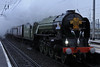 60163 Tornado, Wigan North Western, Thurs 4 February 2010 - 1535.    Tornado races through the gloom, taking the royal train ECS from Preston to Manchester Victoria where Prince Charles and the Duchess of Cornwall rejoined it for the next leg of their tour, to Crewe.