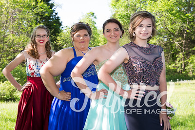 Brittney, Emily, Cherith, and Samantha Prom 2017 (6)