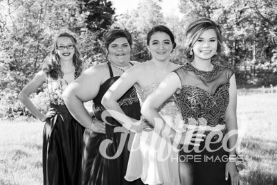 Brittney, Emily, Cherith, and Samantha Prom 2017 (8)