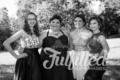 Brittney, Emily, Cherith, and Samantha Prom 2017 (1)
