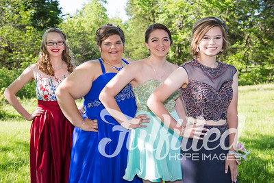 Brittney, Emily, Cherith, and Samantha Prom 2017 (7)