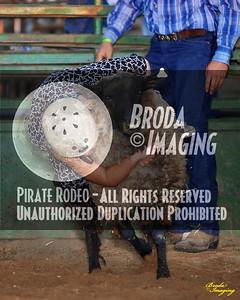NPRA Adelanto Perf1, D2-21 ©Oct'15 Broda Imaging