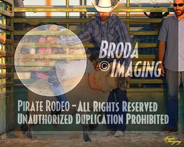 NPRA Adelanto Perf1, D2-12 ©Oct'15 Broda Imaging