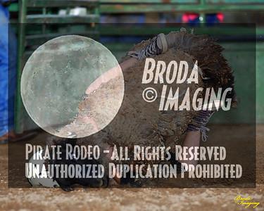 NPRA Adelanto Perf1, D2-22 ©Oct'15 Broda Imaging