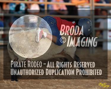 NPRA Adelanto Perf1, D2-19 ©Oct'15 Broda Imaging