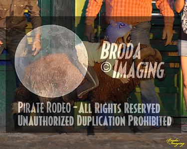 NPRA Adelanto Perf1, D2-8 ©Oct'15 Broda Imaging