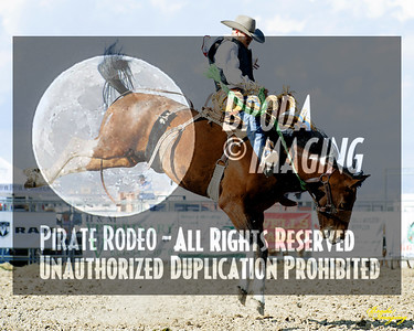 California Finals Rodeo 2015 Perf1, D1-167 ©Broda Imaging