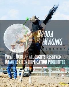 California Finals Rodeo 2015 Perf1, D1-164 ©Broda Imaging