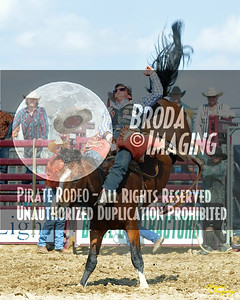 California Finals Rodeo 2015 Perf1, D1-31 ©Broda Imaging