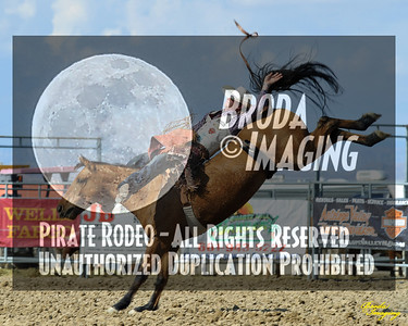 California Finals Rodeo 2015 Perf1, D1-149 ©Broda Imaging