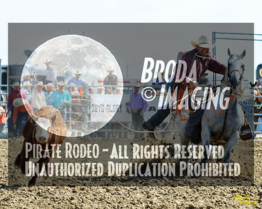 California Finals Rodeo 2015 Perf1, D1-81 ©Broda Imaging