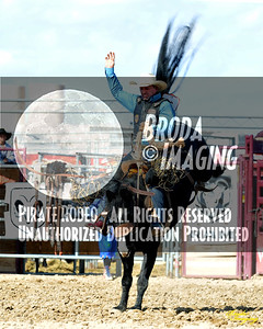 California Finals Rodeo 2015 Perf1, D1-173 ©Broda Imaging