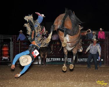 California Finals Rodeo 2015 Perf2 D1-192 ©Broda Imaging
