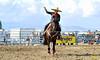 California Finals Rodeo 2015 Perf1, D2-11 ©Broda Imaging