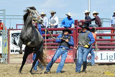 California Finals Rodeo 2015 Perf1, D1-12 ©Broda Imaging