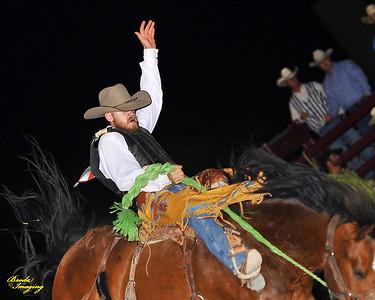 California Finals Rodeo 2015 Perf2 D1-184 ©Broda Imaging