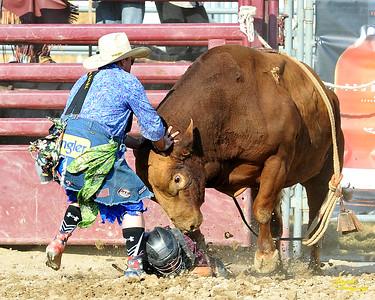 California Finals Rodeo 2015 Perf1, D3-39 ©Broda Imaging