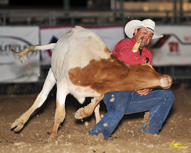 California Finals Rodeo 2015 Perf2 D1-145 ©Broda Imaging