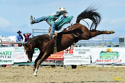 California Finals Rodeo 2015 Perf3, D1-75 ©Broda Imaging