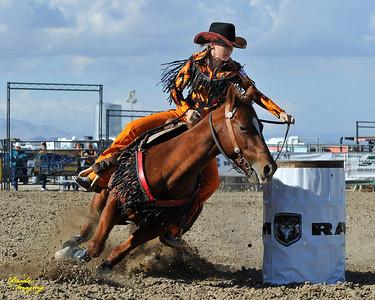 California Finals Rodeo 2015 Perf3, D1-217 ©Broda Imaging