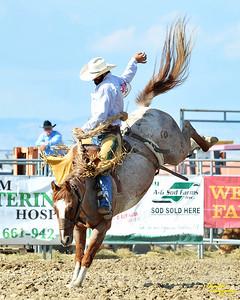 California Finals Rodeo 2015 Perf1, D1-160 ©Broda Imaging