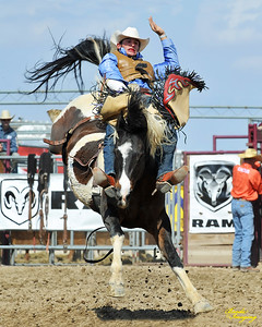 California Finals Rodeo 2015 Perf1, D1-49 ©Broda Imaging