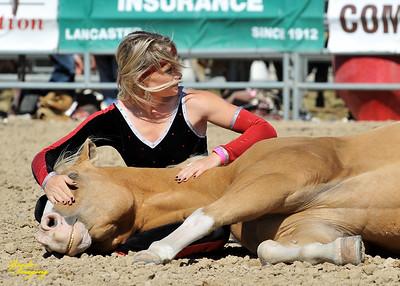 California Finals Rodeo 2015 Perf3, D1-108 ©Broda Imaging