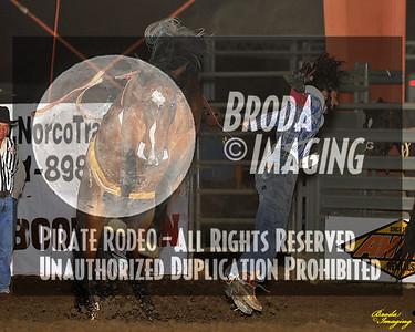 Norco Ca Perf2 D1-35 ©Broda Imaging Aug'15