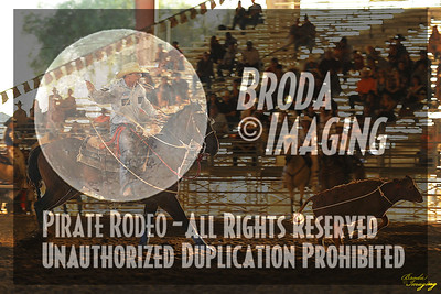 Norco Ca Perf3, D1-36 ©Broda Imaging Aug'15