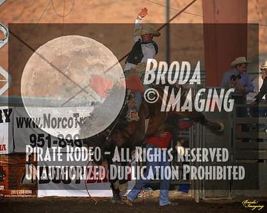 Norco Ca Perf3, D1-94 ©Broda Imaging Aug'15