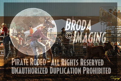 Norco Ca Perf3, D1-34 ©Broda Imaging Aug'15