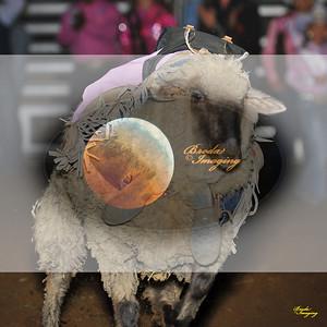 Adelanto 2016 NPRA Perf1-70 ©Broda Imaging
