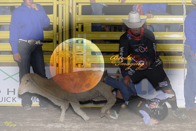 Banning Stagecoach Days PRCA 2016 D2-41 ©Broda Imaging