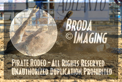 Adelanto NPRA Rodeo Perf2-82 ©Oct'17 Broda Imaging