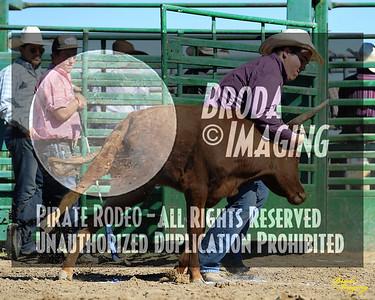 NPRA Adelanto Perf2, D1-120 ©Oct'15 Broda Imaging